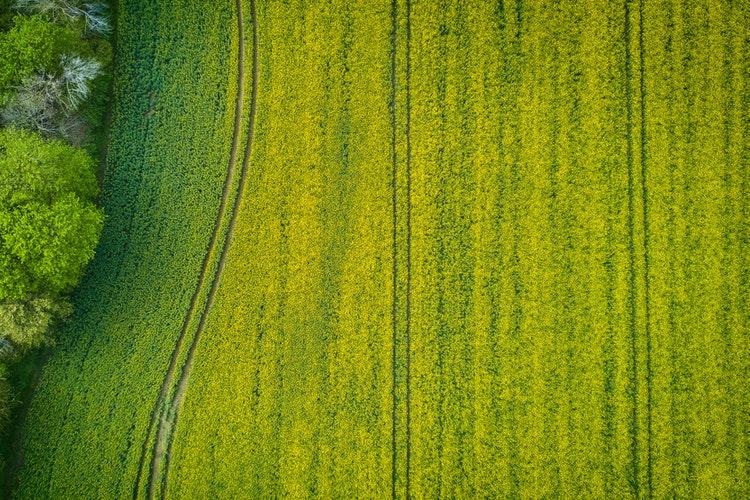 cadastru pentru succesiunea terenului agricol